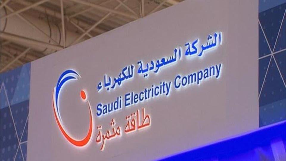 الدوله تمدد اعفاء شركة الكهرباء من الارباح ل 10 سنوات قادمه