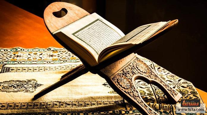 أمثلة الحياة الدنيا في القرآن