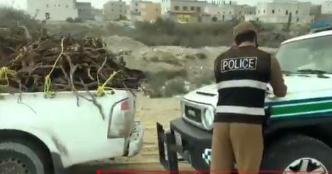 """أمن الطرق"""": ضبط 188 شاحنة محملة بالحطب المحلي بعدة مناطق (فيديو)"""