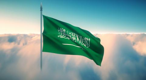 السعوديون الباحثون عن عمل ، أي العاطلون ،     بلغ 1,002,855