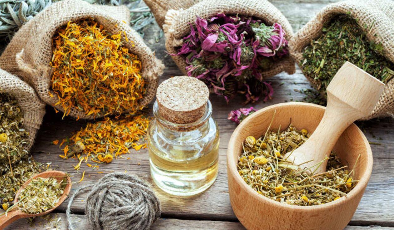 العلاج بالاعشاب || مصطلحات تسمها لأول مرة عن طب الأعشاب
