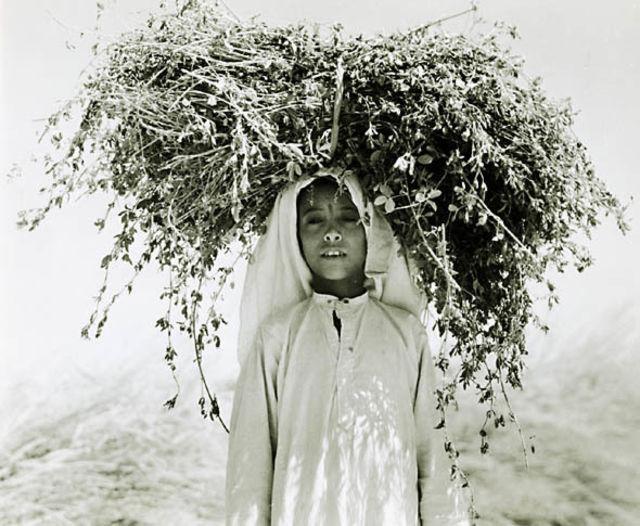 قبل 74 عام تم التقاط هذه الصور للمملكة 💚