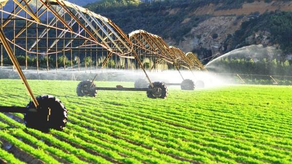 القطاعي الزراعي هو المستفيد