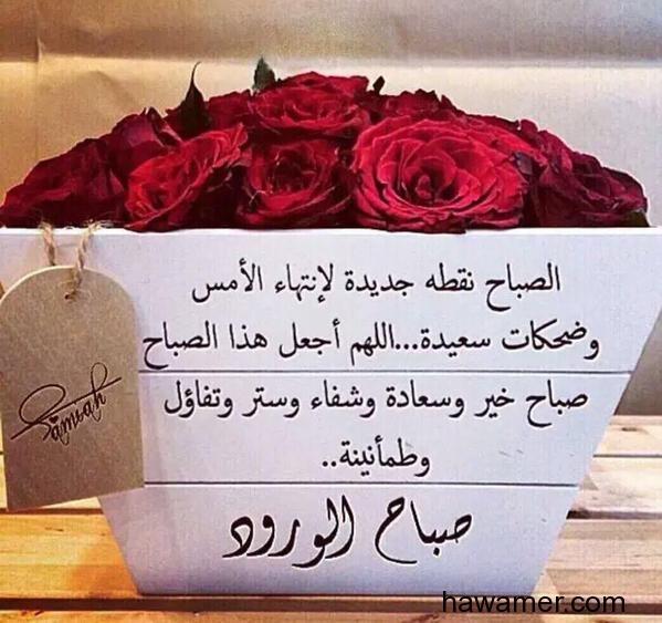رد: مــجــلــس المـــــزيني علي ( 4 )