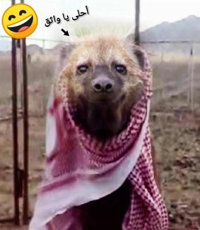 رد: أحذر لاتكون من أعوان الظلمة.!!